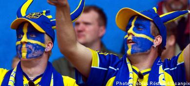 Government to consider Swedish language law