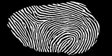 German Interior Minister Schäuble's fingerprint hacked