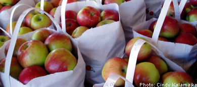 Swedish and English cider: How do you like them apples?