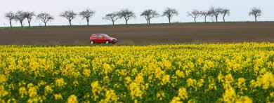 Gabriel buries German biofuels plan