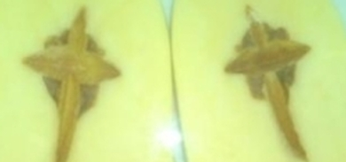 Berlin family finds 'holy potato'