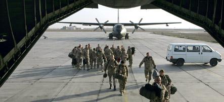 Termites attack German base on Afghan border