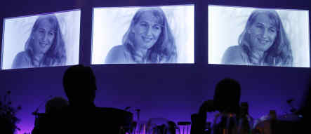 Steffi Graf awarded top German sports honour