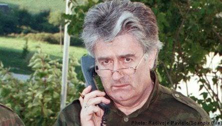 Bildt praises Serbia over Karadzic arrest