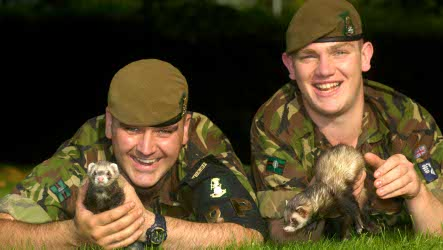 British Army deploys ferret forces to Münster