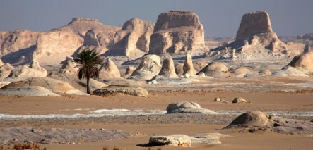 Five German tourists kidnapped in Egypt