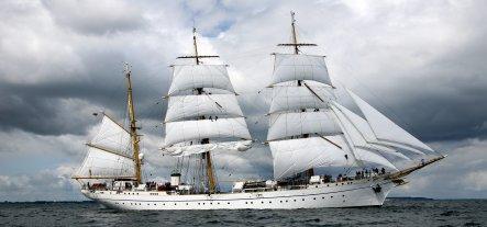 Body of missing Gorch Fock sailor found