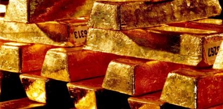 Customs officers bust gold smuggling ring