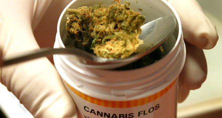 German health insurers reject medical marijuana coverage