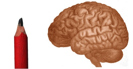 Doctors missed pencil in Swedish boy's brain