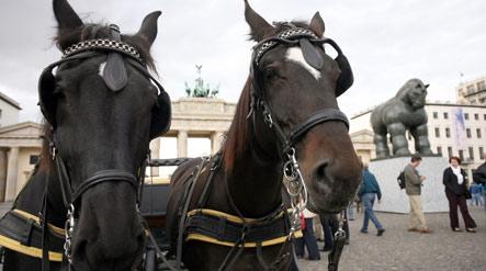 Horse-drawn carriage runs amok in Berlin