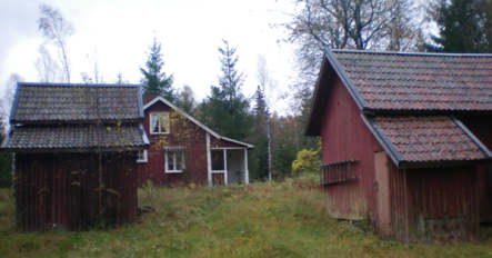 Finding your roots in Sweden