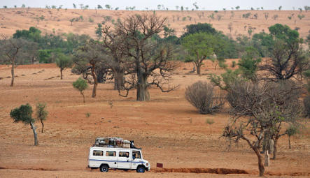 Elderly German woman kidnapped from tour in Mali