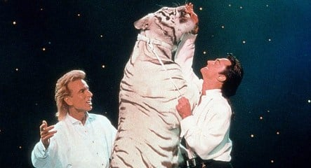Siegfried and Roy take to stage with tiger for last hurrah