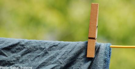 Swedish study finds sweaty jocks harm the environment