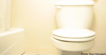 Swedish town dumps idea of anniversary toilets