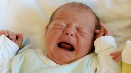 Reality TV show with borrowed babies causes outcry