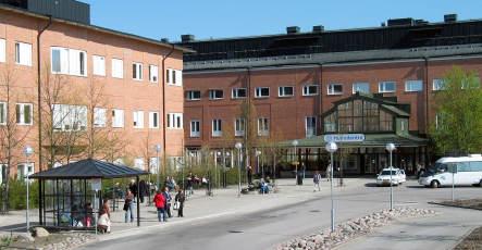 Swine flu infection threatens Swede's life