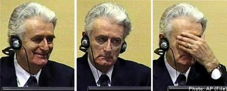 Bildt to meet accused war criminal's lawyer