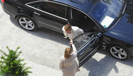 Schmidt slammed for stolen limo