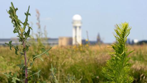 Tempelhof to become enormous city park