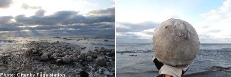 Mysterious giant ice balls discovered on Swedish coastline
