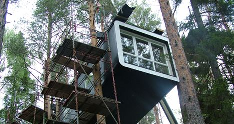 Sweden's latest hotel experience – up a tree