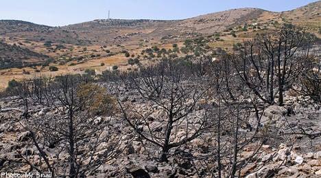 Evacuated Swedes to return after Greek fires