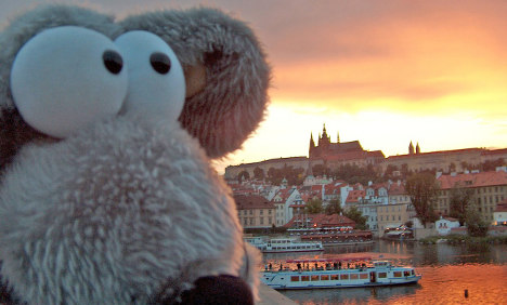 Cologne woman hits plush pay dirt with tours for teddy bears