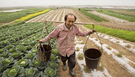Scrap EU farm subsidies to help poor, Niebel demands