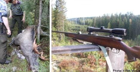 Passing the 'man test': elk hunting in Sweden
