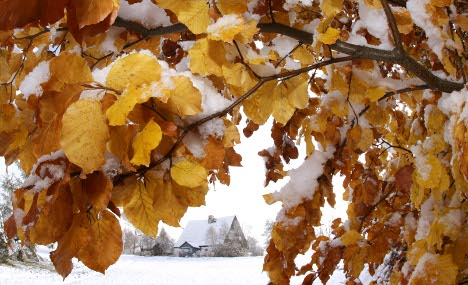 Snow expected in central mountain regions