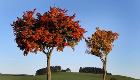 Sunny but crisp autumn weekend ahead