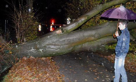 Storm 'Carmen' capsizes boat, fells trees and dumps snow