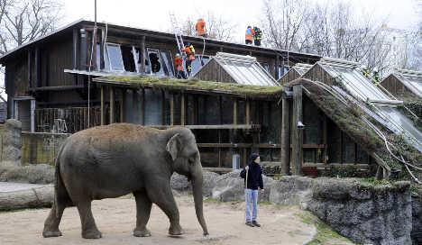 Fire kills animals at Karlsruhe Zoo