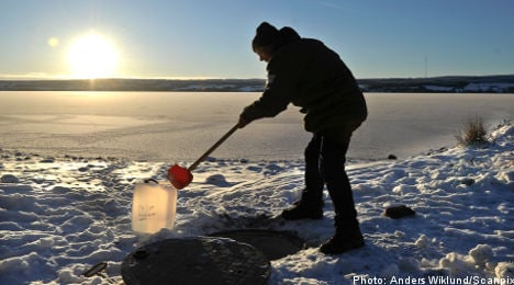 Swedish city traces source of water parasite