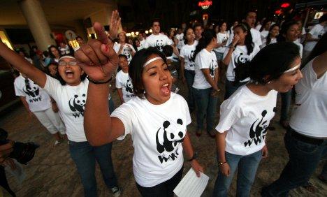 Breakthrough unlikely at Cancún climate summit, Röttgen says