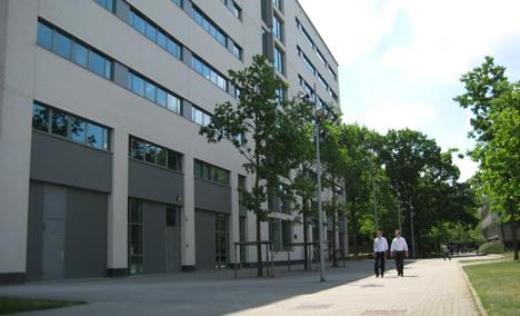 MBA from Dutch school opens doors across globe