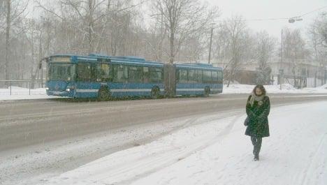 Snowfalls put Swedish spring on ice