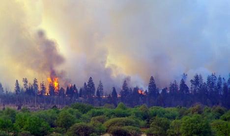 Firefighters quench huge forest blaze near Aachen