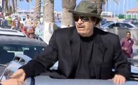Brüderle wants Libya's assets for relief aid