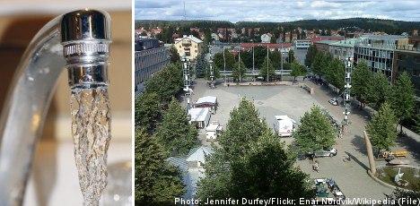 Stomach bug strikes second Swedish town