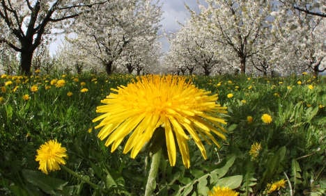 April showers giving way to sunny weekend
