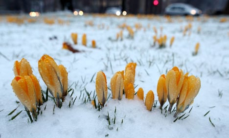 Frost and snow to return