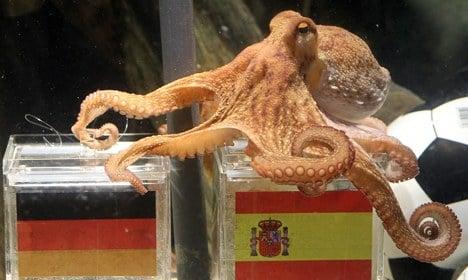 Aquarium seeks heir to Paul the psychic octopus