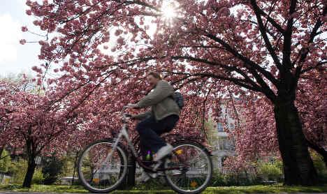 German cities among Europe's greenest