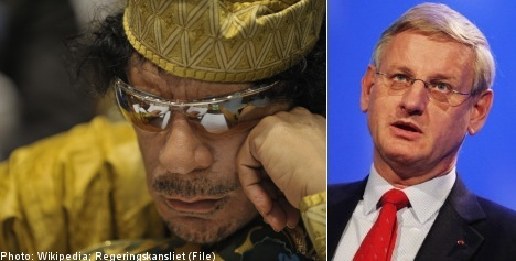 Qaddafi 'bizarre yet fascinating': Bildt