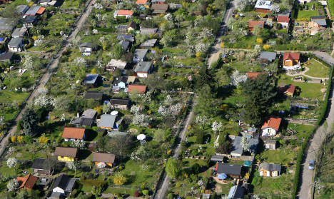 Allotments grow on urban gardening generation