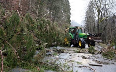 Germany ravaged by New Year's storms