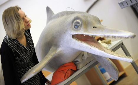 Scientists discover new marine dinosaur